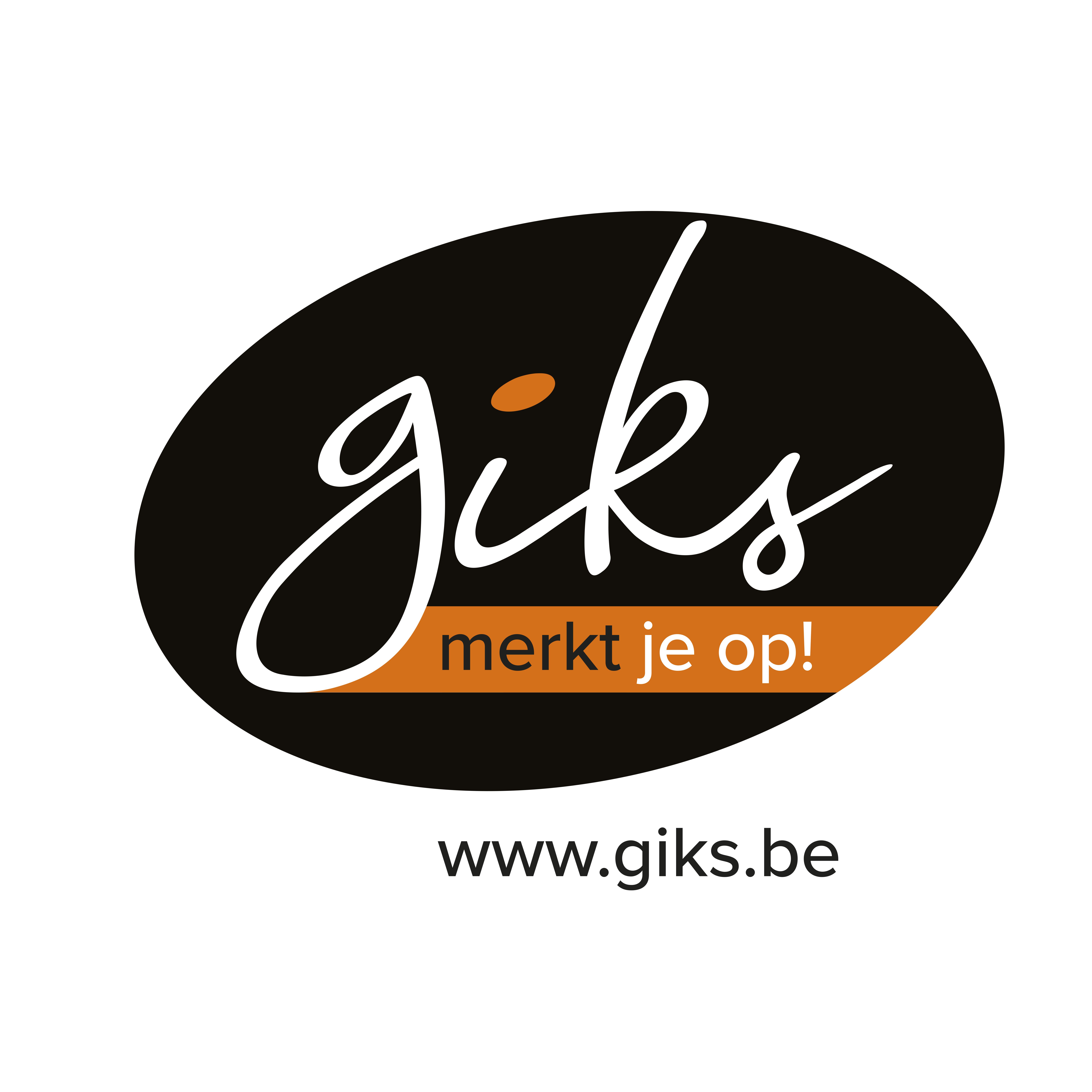 GIKS promotie : Dag van de webshop