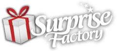 Surprise Factory promotie : Valentijn